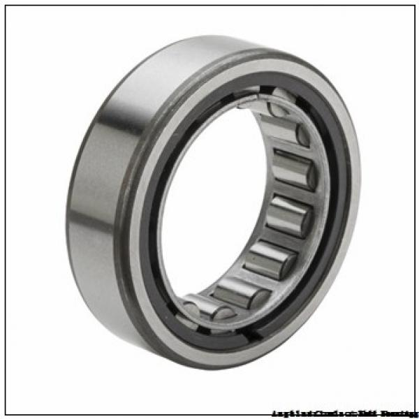 FAG NU320-E-M1A-C4  Cylindrical Roller Bearings #1 image