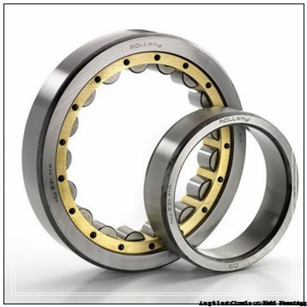 FAG NU324-E-M1A-C3  Cylindrical Roller Bearings #1 image